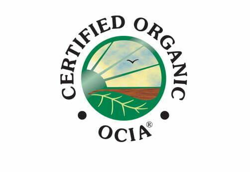 ocia.jpg.crop_display